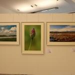 FotoausstellungFridolfing2019IMG_0749