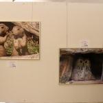 FotoausstellungFridolfing2019IMG_0753