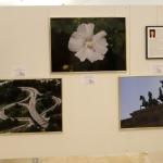FotoausstellungFridolfing2019IMG_0804