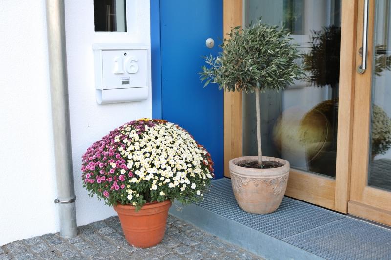 Tag-der-offen-Tür-Lechner2019IMG_7258